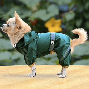 small dog raincoats