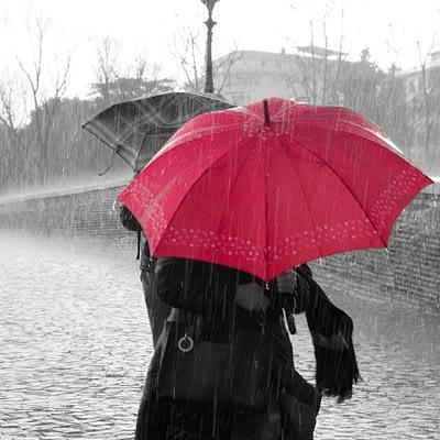 best windproof umbrellas