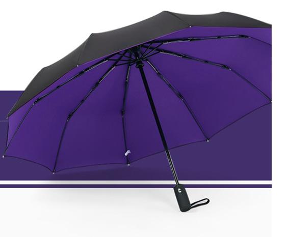 Luxury car umbrella