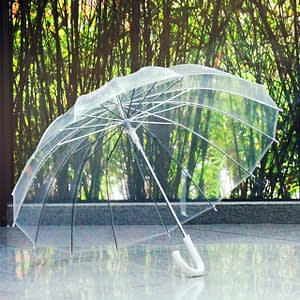 Transparent umbrella