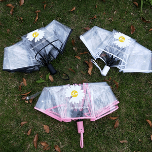 Transparent Daisy umbrella