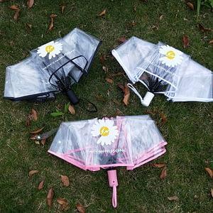 Transparent Daisy umbrella