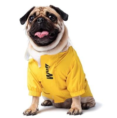 Puppy rain jacket