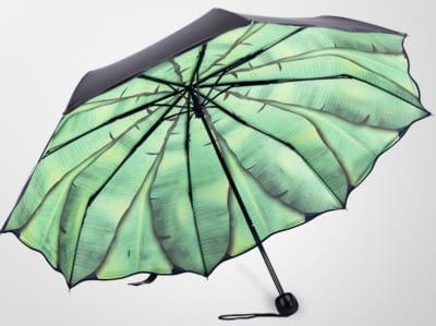 Women rain umbrella
