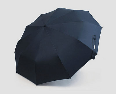 business man umbrella