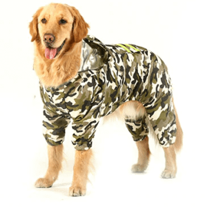 dog raincoat large dog