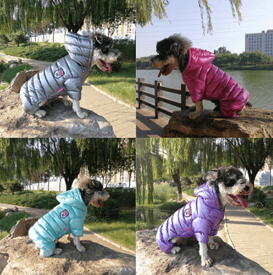 Waterproof puppy clothing