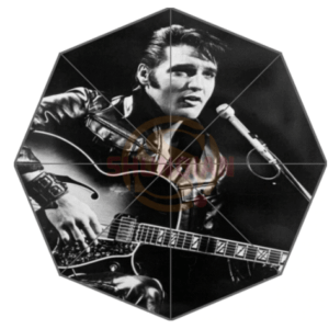 Elvis fashion umbrella