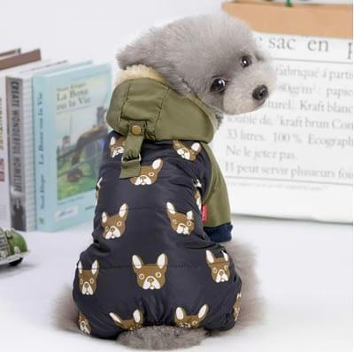 four legged dog raincoat
