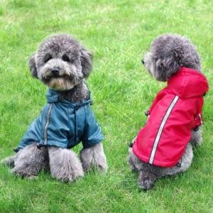 puppies raincoats