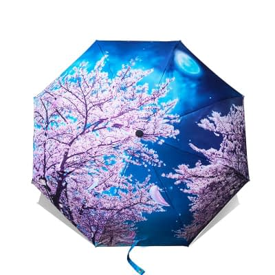 designed umbrellas