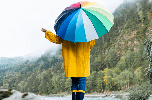 best umbrellas 2019